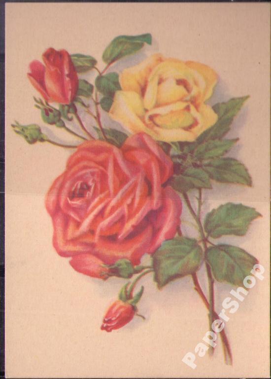 На открытках цветы ссср 70