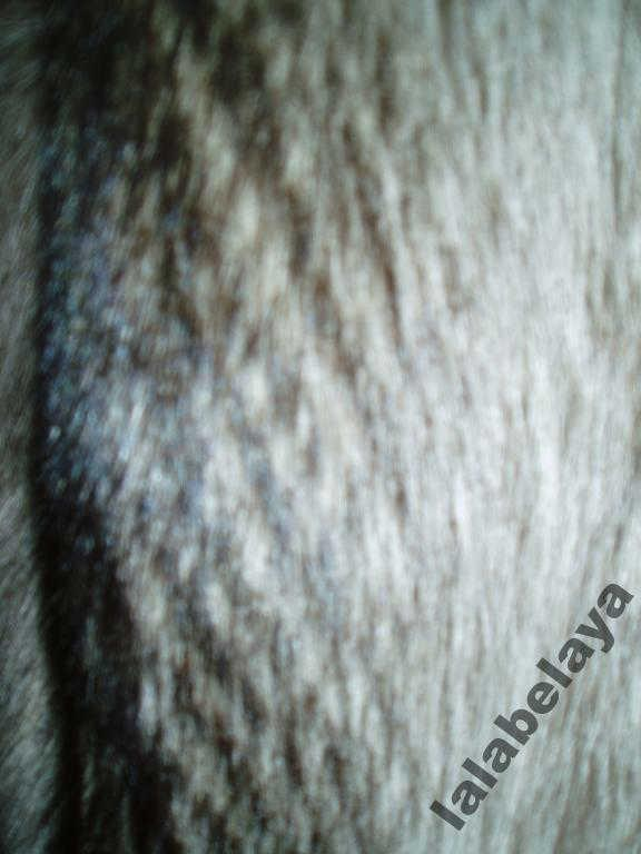 Пушистый полушубок  из енота  размер 46/48