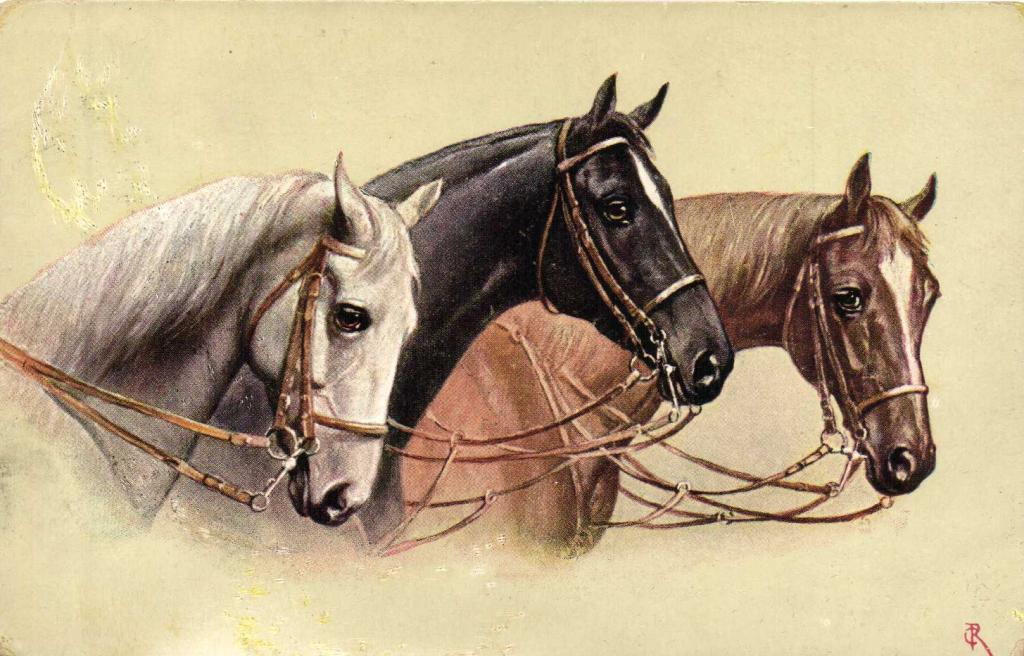 Лошади на старинных открытках, открытка