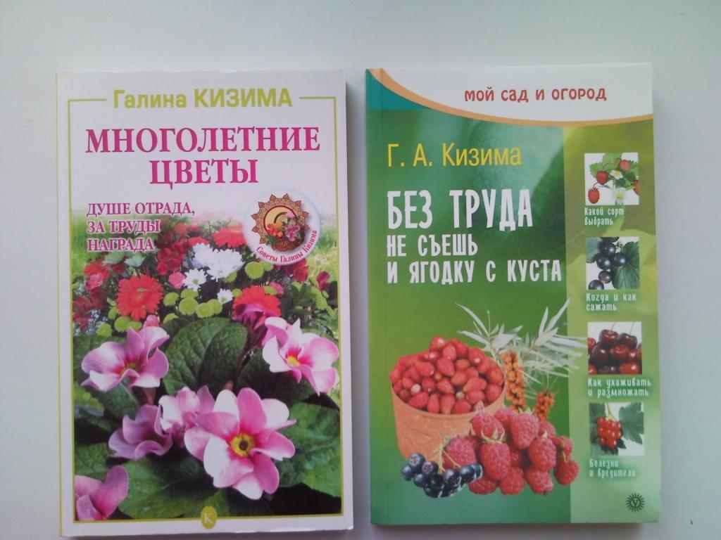 Галина Кизима - выращивание рассады томатов уникальным методом