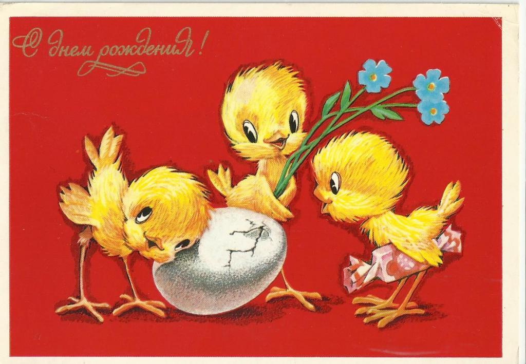 рисунки прикольного цыпленка магнитные