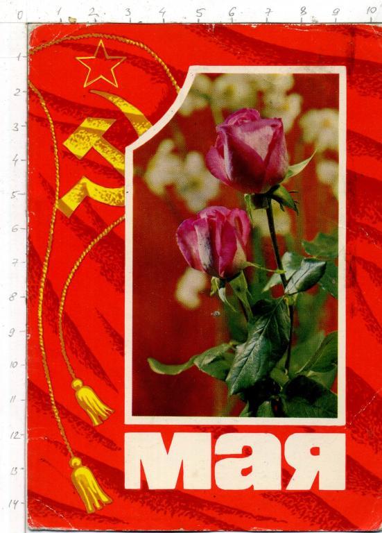 каникулы Москве открытки на 1 мая фото Ольгинку, только