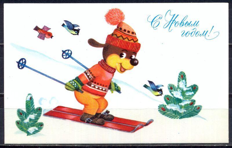 Поздравляю лыжи с новым годом