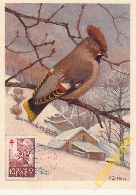Февраля, открытки список тем