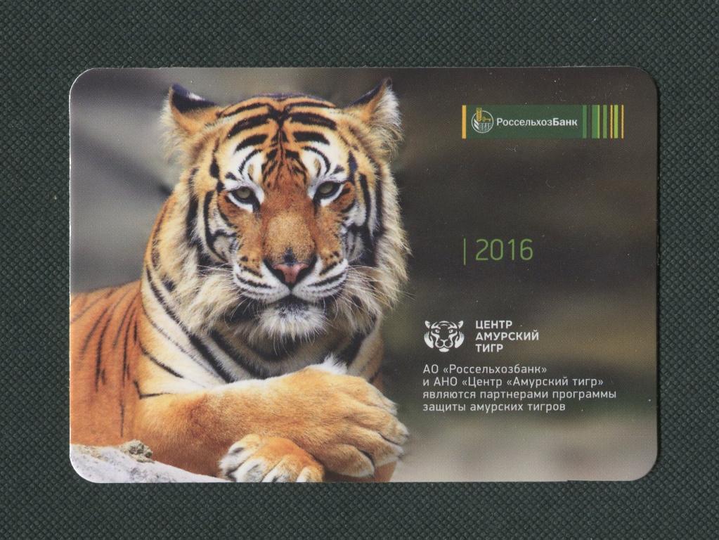 россельхоз банк тамбов карта амурский тигр сколько процентов Лонго быстрый
