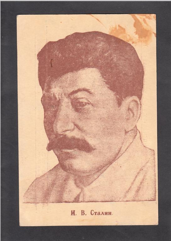 И.В.Сталин. Воронежский губотдел ВОС.