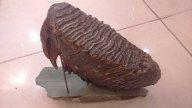 Мамонт шерстистый, на подставке из уральского самоцвета,редкий