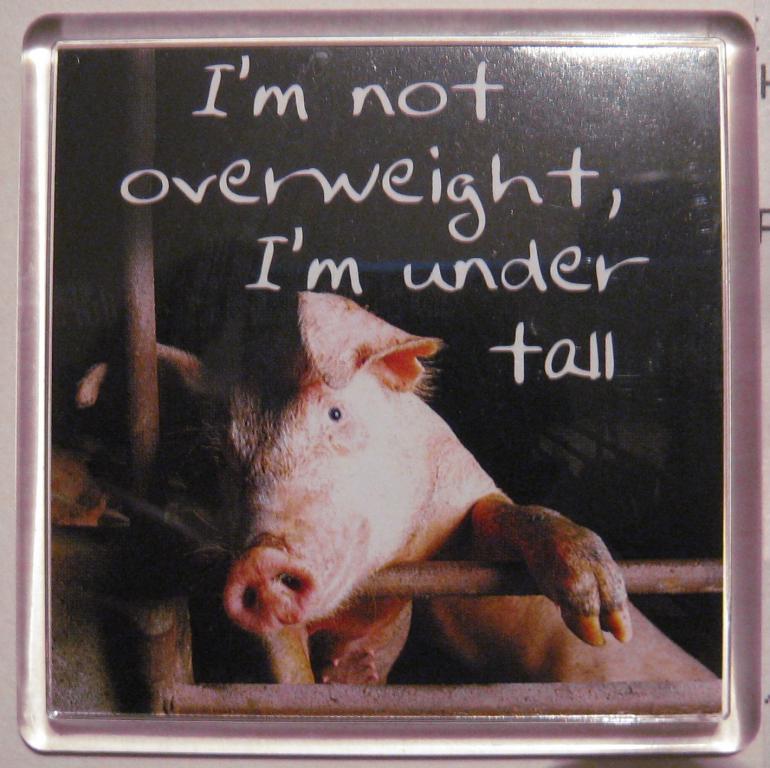 Магнит на холодильник (Англия). У меня не перевес, у меня - недорост. Супер подарок толстякам.