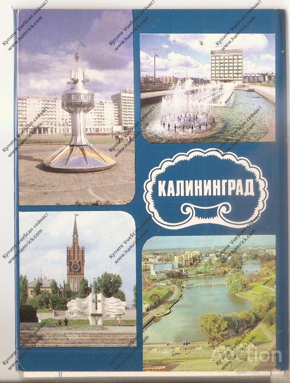 Забавные, открытки калининграда с надписями