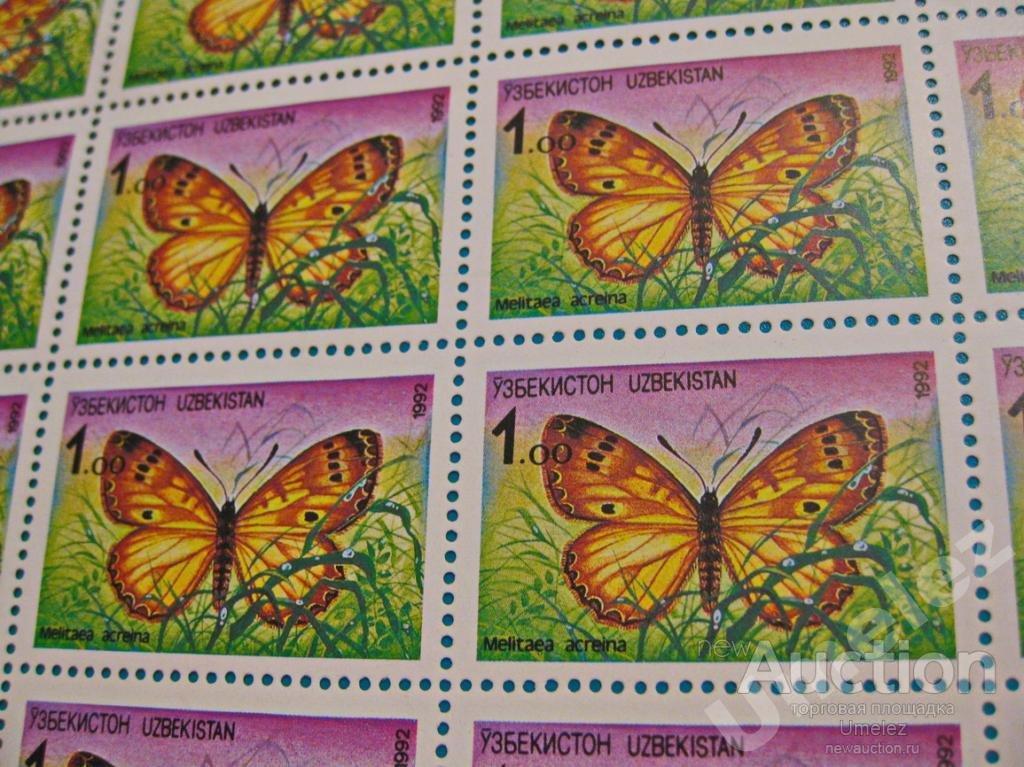 Узбекистан. Бабочка Melitaea acreina.  Лист,1992 г.