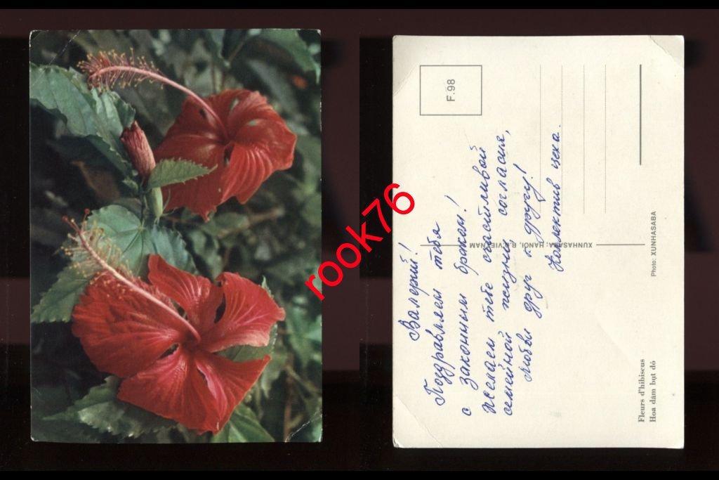 Для самой, подписанные открытки в тюрьме