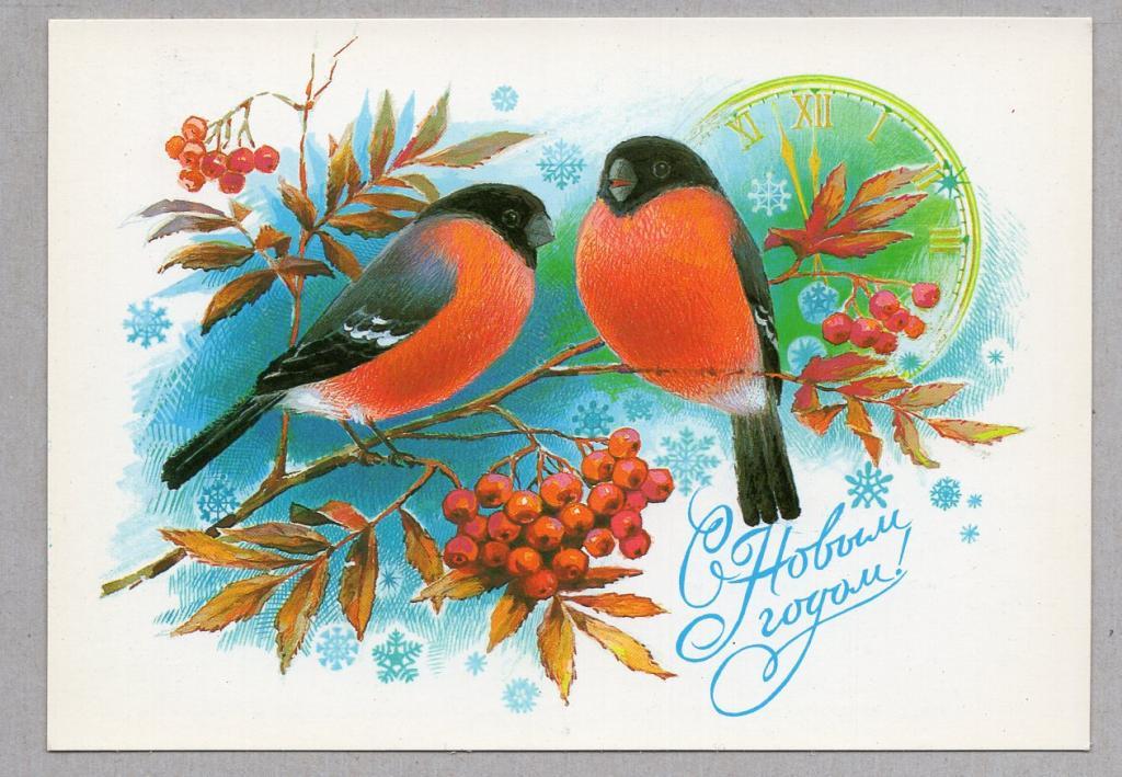 волкодав открытки с новым годом 1980 с птицами картинки, главное собаки