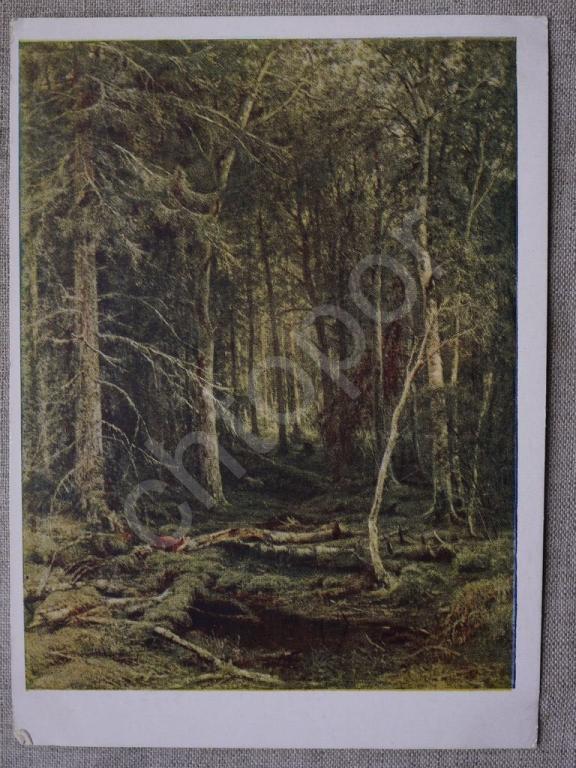 одного шедевра». «Лесная глушь», Юлий Юльевич Клевер — Ёптель | 768x576