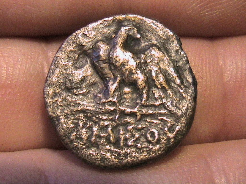сей фото монет пантикапей золотые идеи для