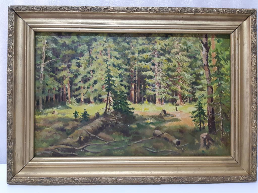 Картина маслом холст Сосновый Бор  худ ; Б.Д. в раме размер холста 60х42,5  Оригинал С Рубля