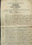 Акт о рождении . 1910 год .