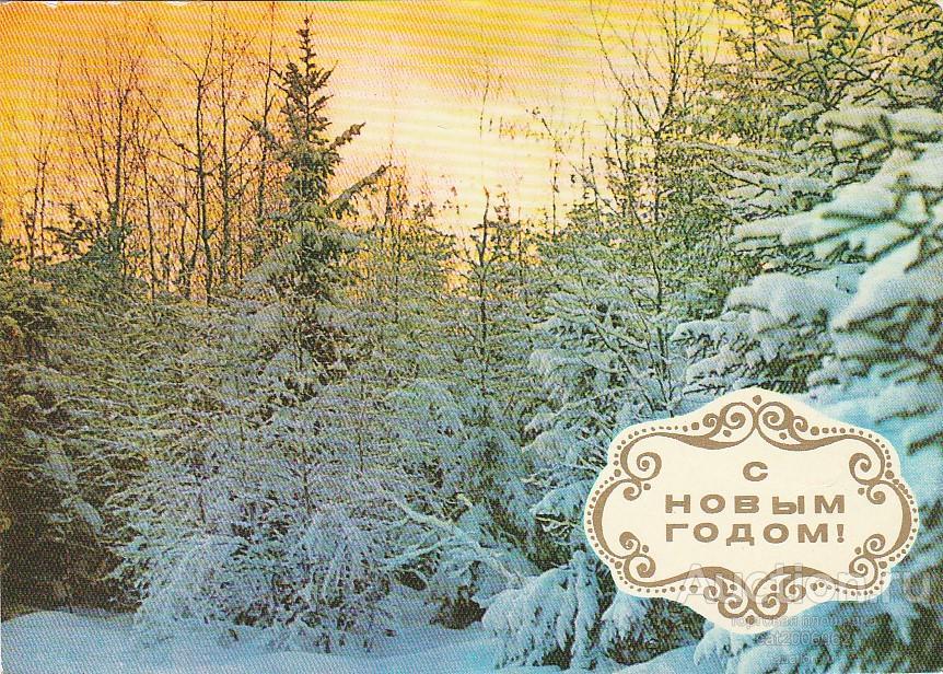 День свадьбы, открытка костенко 1968 с новым годом лес зима