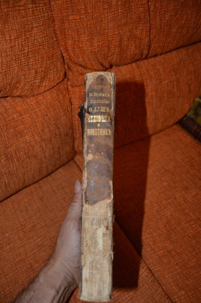 Вундт. Лекции о душе человека и животных. 1896