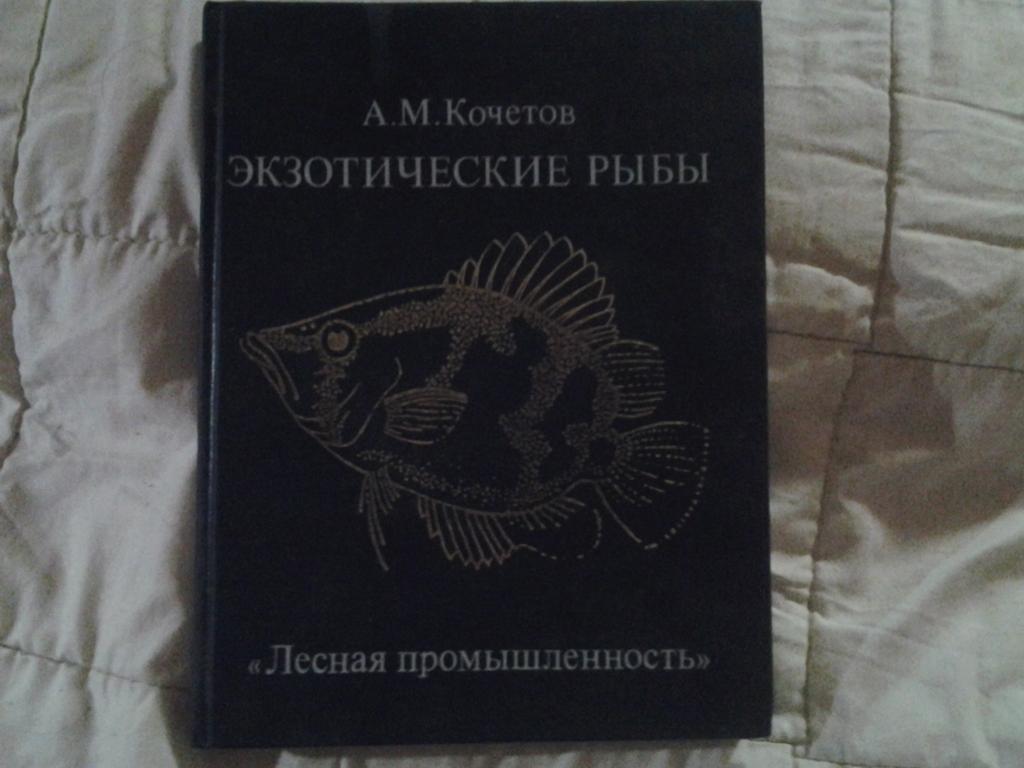 А.М.КОЧЕТОВ ЭКЗОТИЧЕСКИЕ РЫБЫ