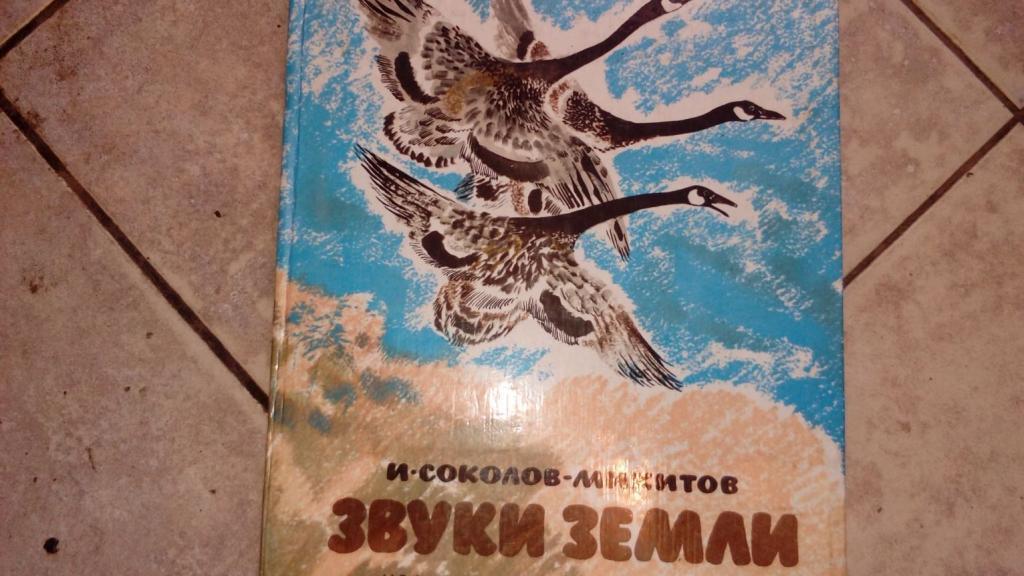 журавль летчик соколов микитов картинки представление изготавливаемых