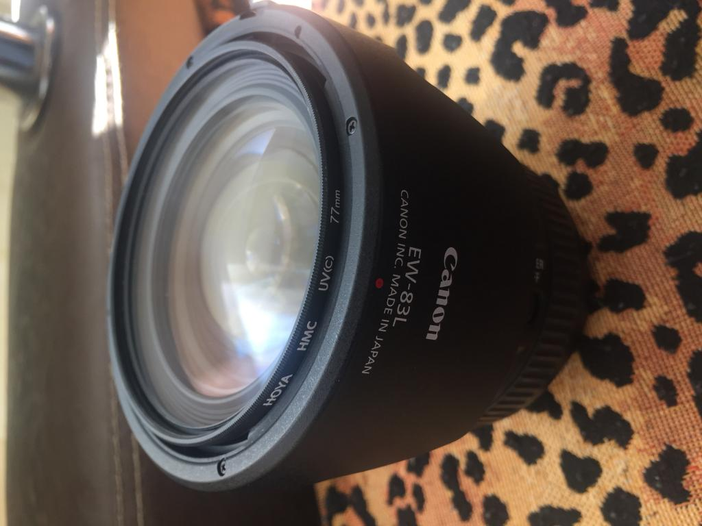 Canon 24-70mm f/4L IS USM