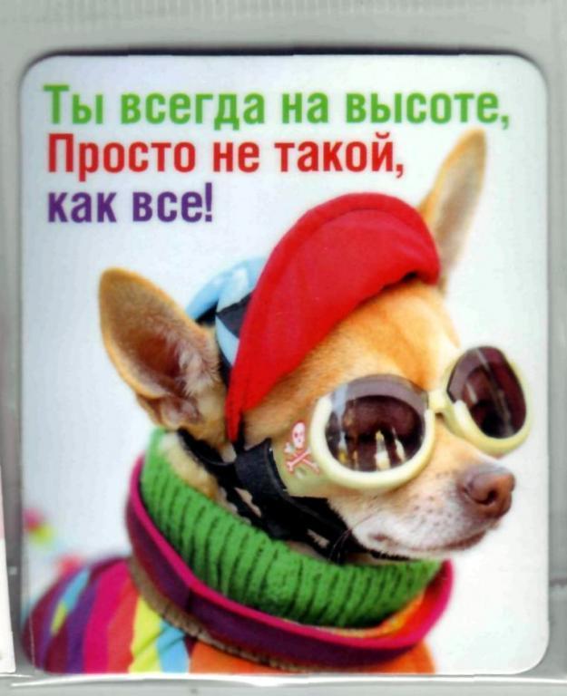 пожелания будь всегда на высоте чеченской