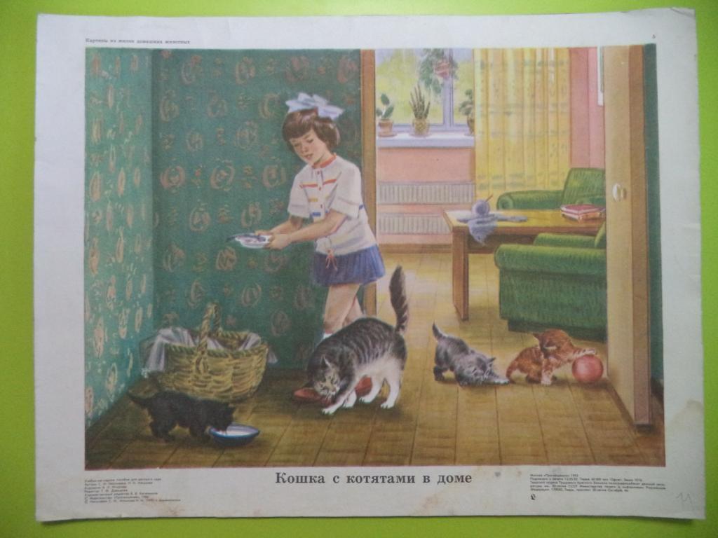 несколько рассказ по картинке кошка с котятами средняя группа основном, плант микс