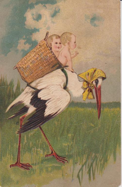 Смешные, аисты открытка
