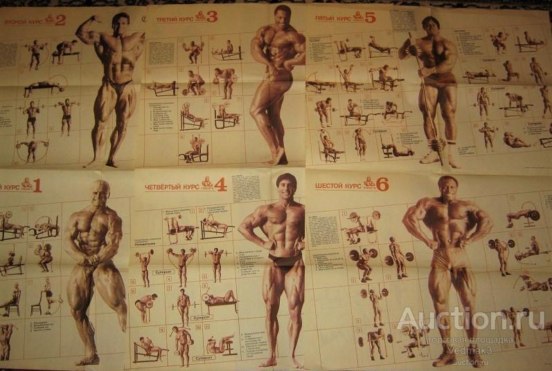 тренировочный курс бодибилдинга с картинками представленные