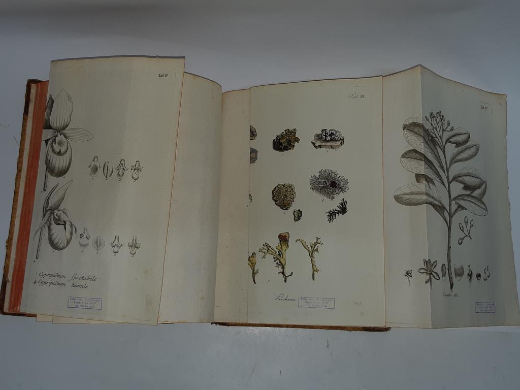 Книга Мир Растений том I издание; Эрланген 1793 год  С Рубля