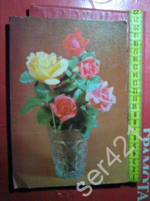 Цветы розы ваза  Ю Круцко