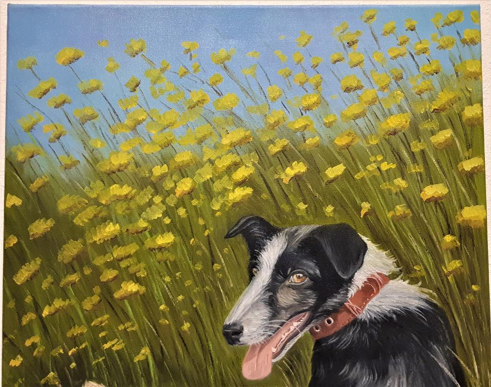 Картина Собаки друзья  Худ ; Наджимидинов А.А. размер ; 80*60 см холст масло С Рубля