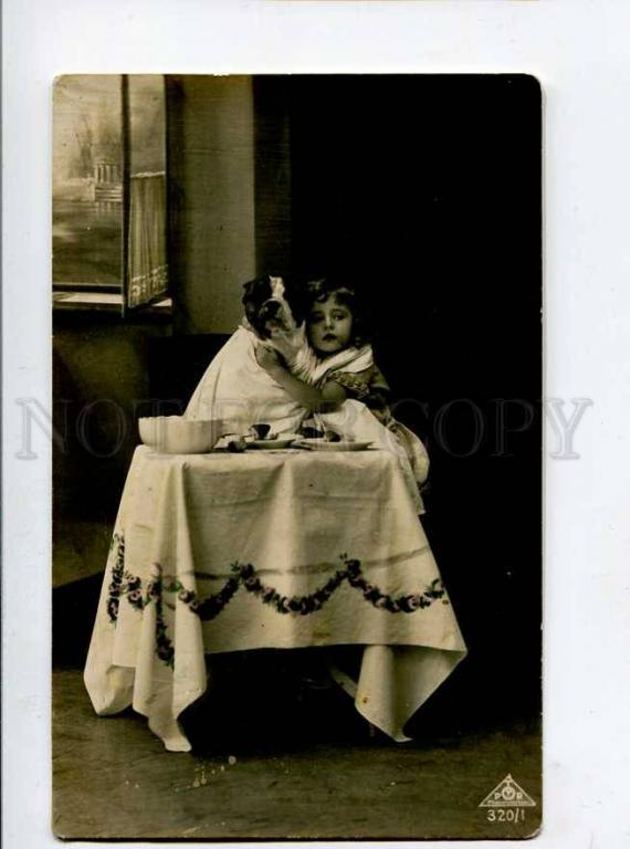 415067 симпатяга девушка бульдог сидящий стол фото