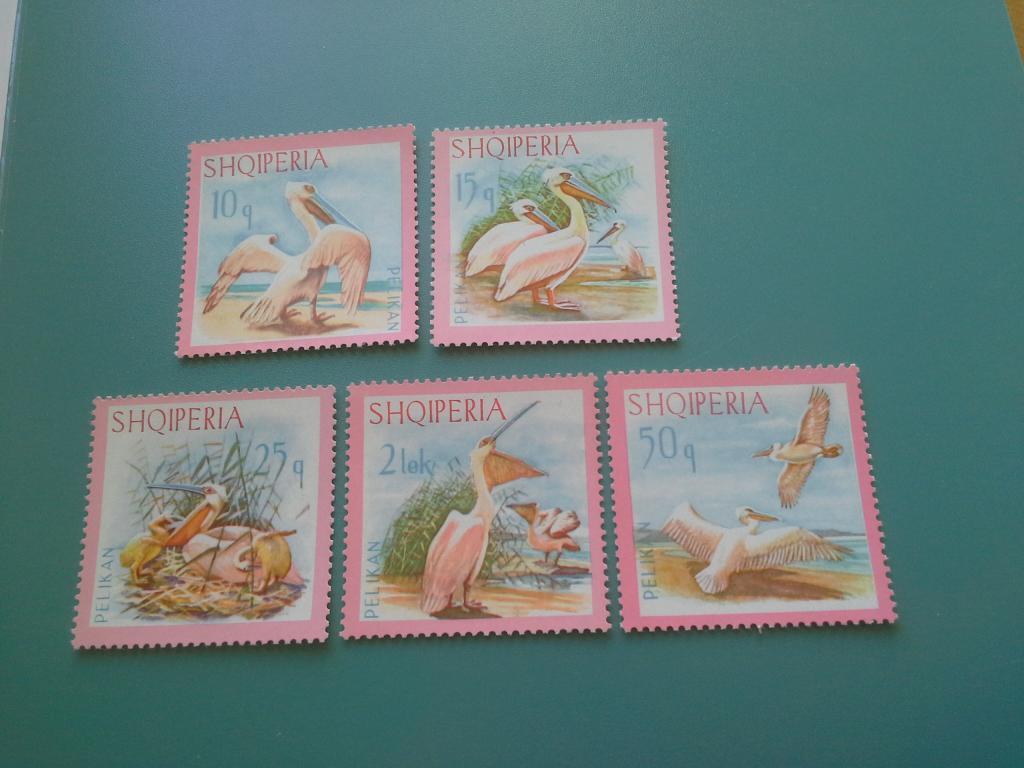 Европа, Албания, 1967 г., Птицы/Пеликаны (полная серия, **)