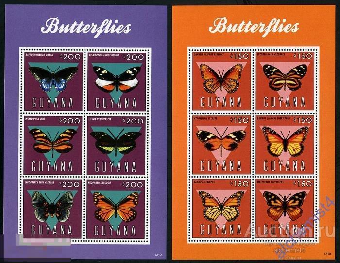 Гайана 2013 ** Насекомые: Бабочки