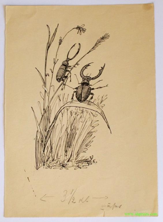 """(оригинальный рисунок) КАНЕВСКИЙ А.М. (1889-1976) РИСУНОК ДЛЯ ЖУРНАЛА """"ПИОНЕР"""" (1950-е гг)"""