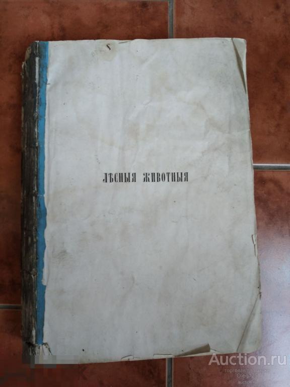 [Полный комплект гравюр на стали] Брем, А., Россмесслер, Е. Лесные животные.  1867 Под ПЕРЕПЛЕТ
