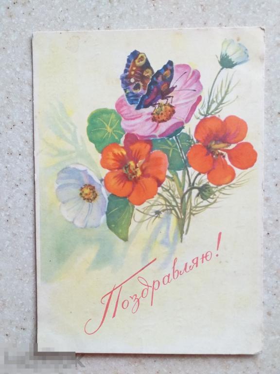 Мухин Поздравляю 1966 г. подп.цветы и бабочка